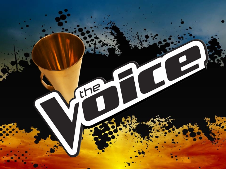 The Voice Slide 1